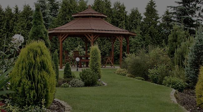 Little Elm Garden Design